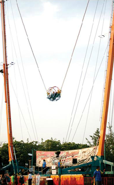 Reverse Bungee, Technical Park